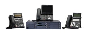 SV8100 System Support and Maintenance